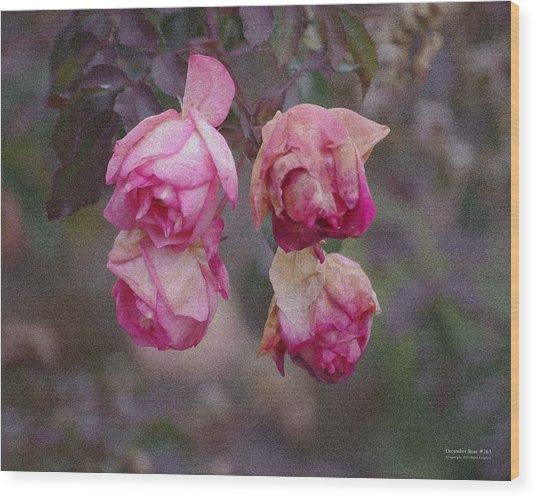 December Rose #263 Wood Print