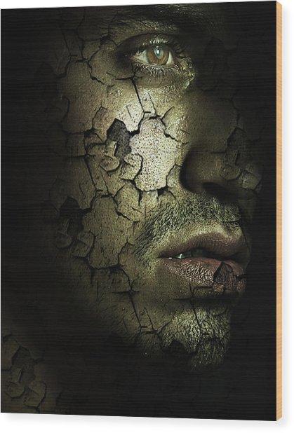 Decomposition Wood Print