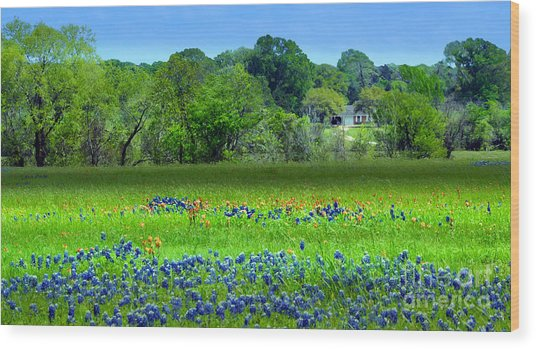 Wood Print featuring the mixed media Decorative Texas Homestead Bluebonnets Meadow Mixed Media Photo H32517 by Mas Art Studio