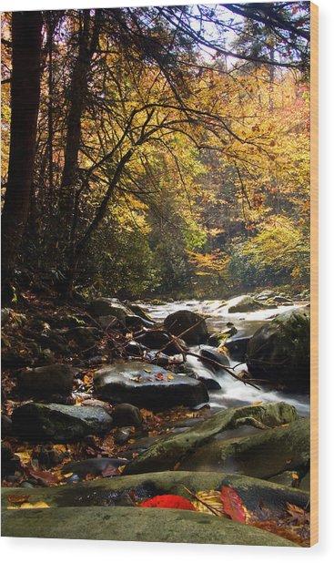 Deep Creek Mountain Stream Wood Print