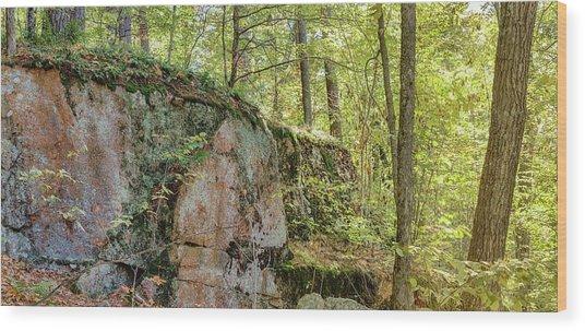Deep Dark Forest Wood Print