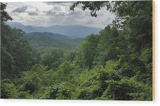 Deep In The Great Smoky Mountains Wood Print by John Arthur Robinson