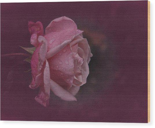 Deep Pink Nov Rose Wood Print