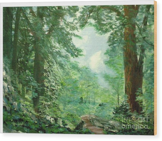 Deep Woods Path Wood Print by Hal Newhouser