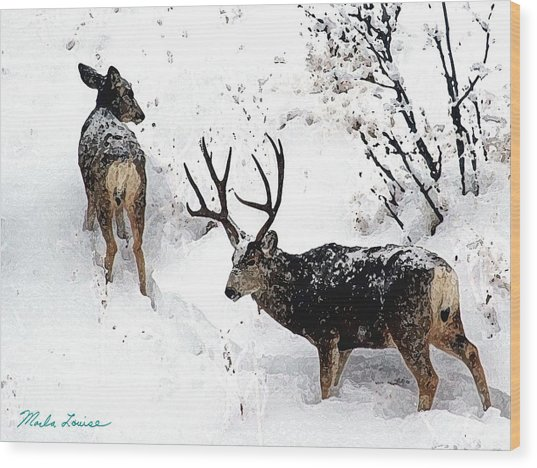Deer And Snow 1 Wood Print by Marla Louise