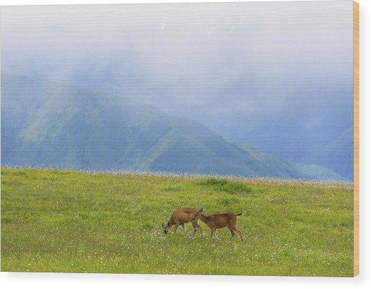Deer In Browse Wood Print