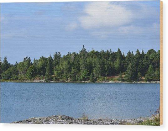 Deer Isle, Maine No. 5 Wood Print