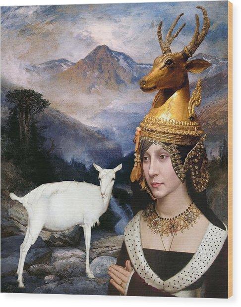 Deer Medicine Woman Wood Print