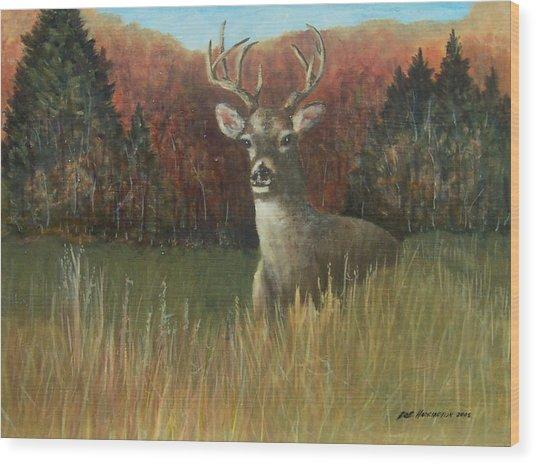 Deer Season Wood Print by Robert Harrington