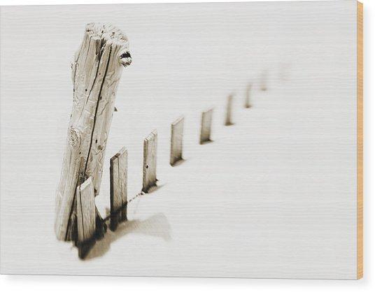 Delaware Dunes Last Stand Wood Print
