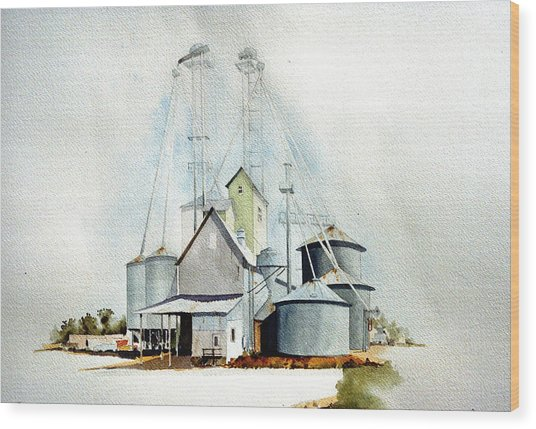 Delaware Grain Wood Print by William Renzulli