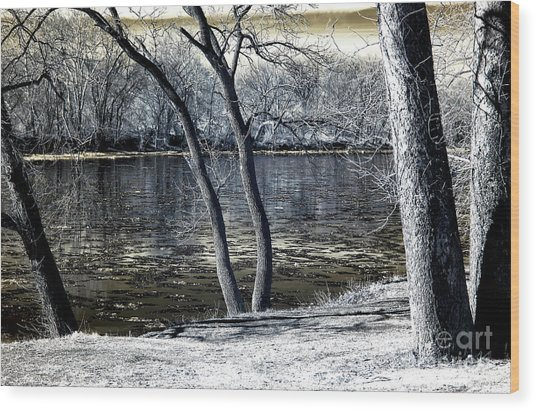 Delaware River Infrared Wood Print by John Rizzuto