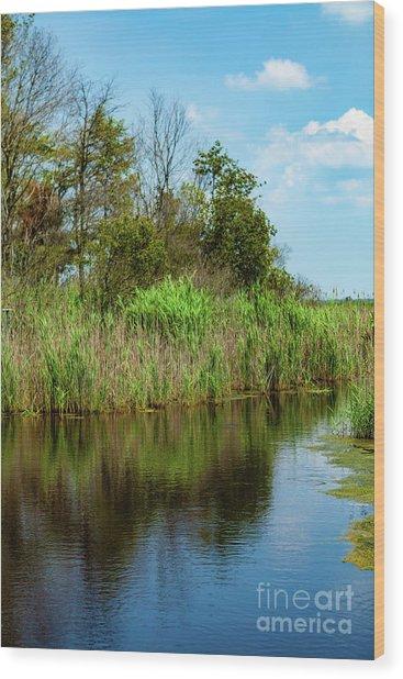 Delaware Waterway Wood Print