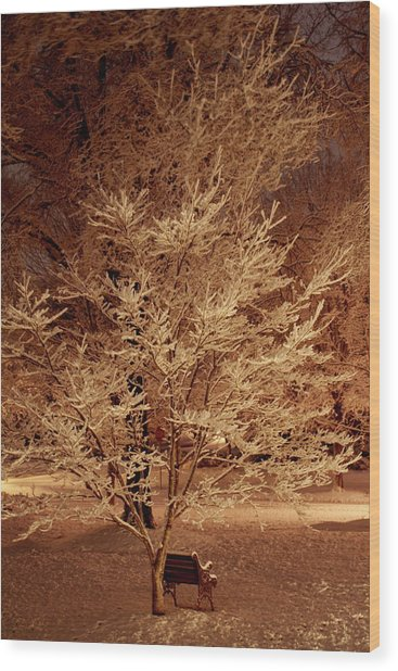Delicate Dusting Wood Print by Charles Shedd