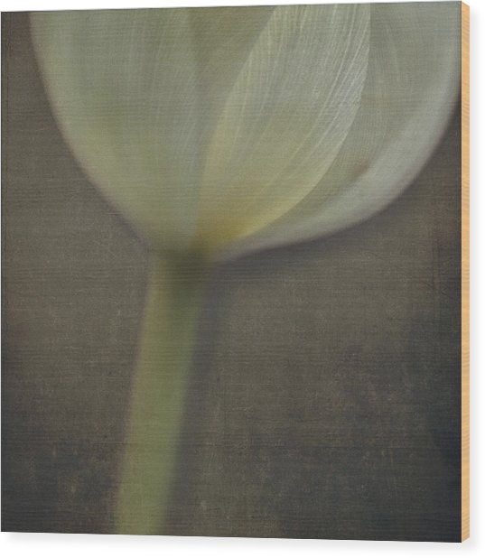 Delicate Goblet Wood Print