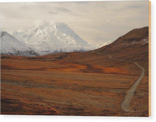 Denali And Tundra In Autumn Wood Print