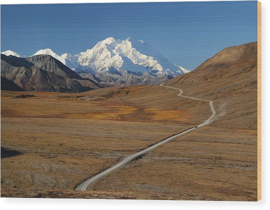 Denali Is Out Wood Print