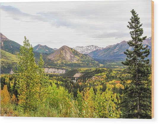 Denali National Park Landscape No 2 Wood Print