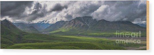 Denali National Park Pano  Wood Print