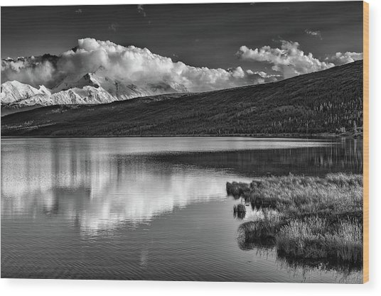 Denali Reflections In Black And White Wood Print