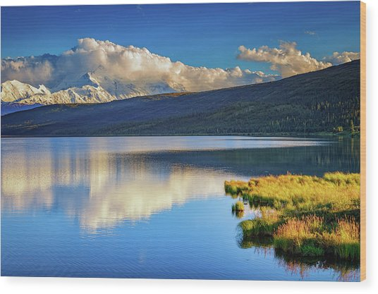 Denali Reflections Wood Print