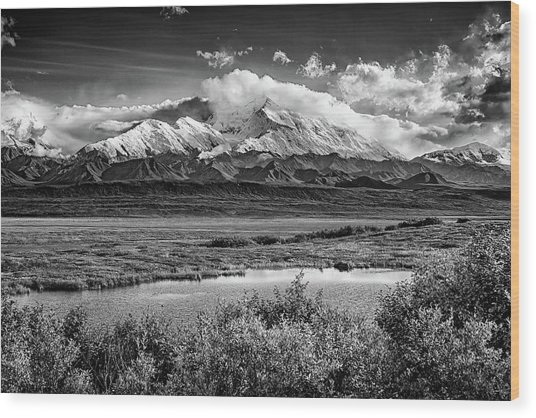 Denali, The High One In Black And White Wood Print