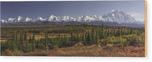 Denali Tundra Wood Print