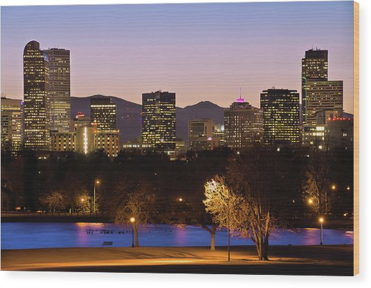 Denver Skyline - City Park View Wood Print