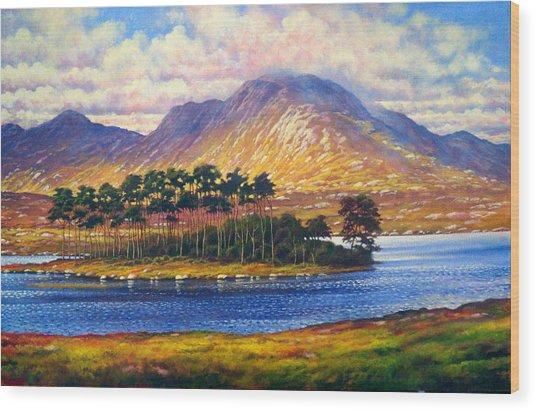 Derryclare,connemara,ireland Wood Print by Alan Kenny