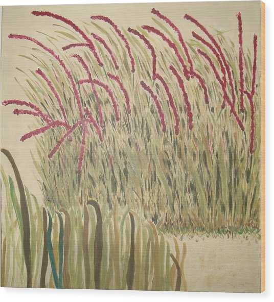 Desert Grasses Wood Print by Wendy Peat
