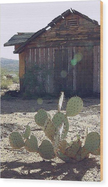Desert Home Wood Print