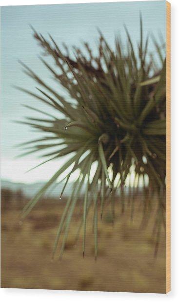 Desert Leaves Wood Print