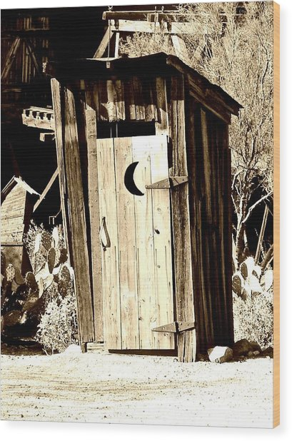 Desert Loo Wood Print by Cathy Dunlap