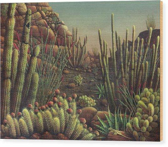 Desert Potpourri  Wood Print