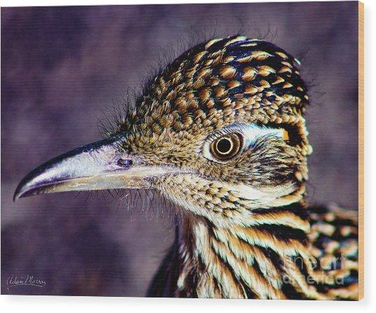Desert Predator Wood Print