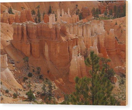 Desert Sentinels Wood Print
