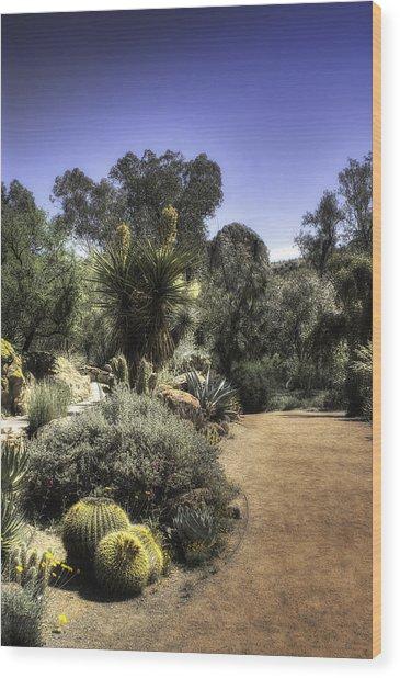 Desert Walkway Wood Print