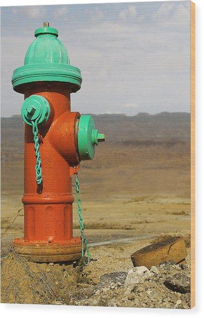 Desert Water Wood Print