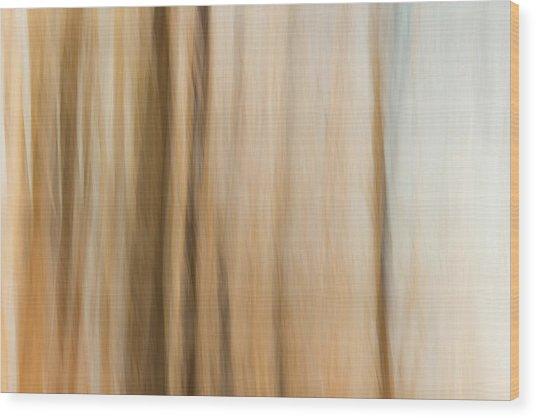 Desert Wind Wood Print