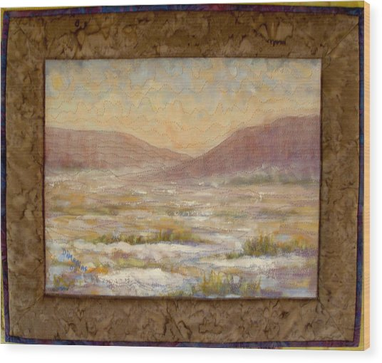 Desert Winter Wood Print by Diane and Donelli DiMaria