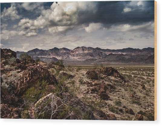 Deserted Red Rock Canyon Wood Print