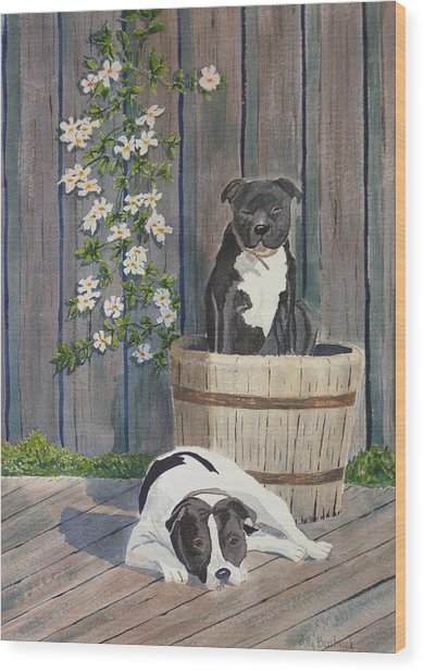 Devilish Duo At Rest Wood Print by Ally Benbrook