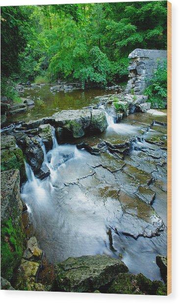 Devils River 1 Wood Print