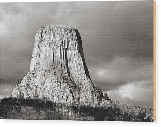 Devil's Tower Black And White Wood Print