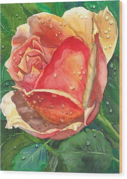Dew Drop Rose Wood Print by Robert Thomaston