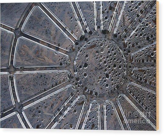 Dew On Dish Wood Print