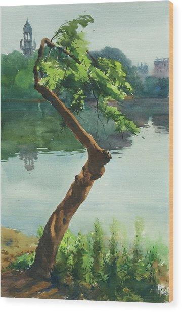 Dhanmondi Lake 03 Wood Print