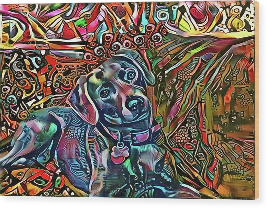 Did Somebody Say Treat? Blue Lacy Dog Wood Print