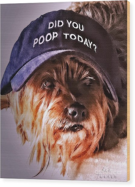 Did You Poop Today Wood Print