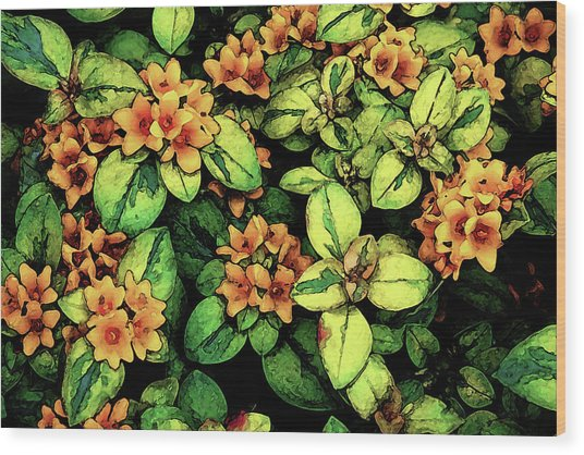 Digital Painting Quilted Garden Flowers 2563 Dp_2 Wood Print